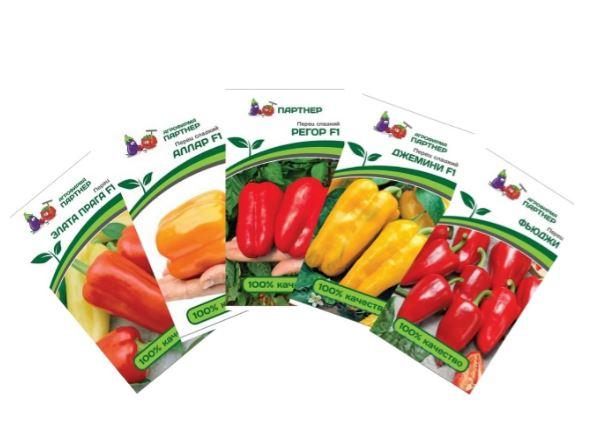 Выбираем поставщиков семян для продажи в розничной торговой точке